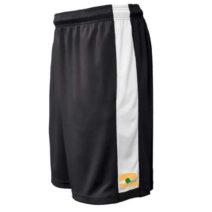 119_shorts_black