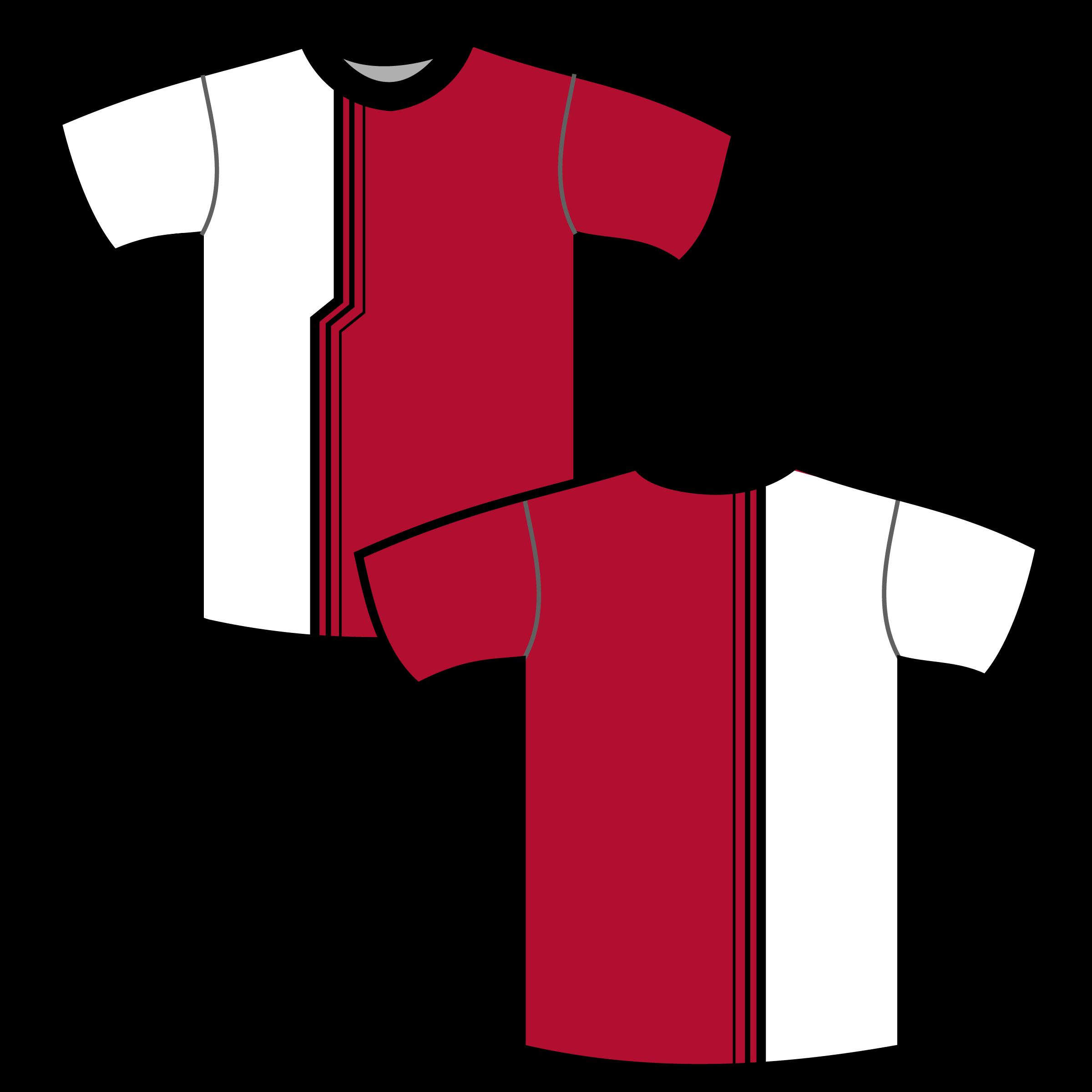 Semi Custom Jersey 3 Custom Apparel Inc