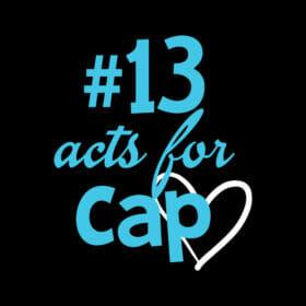 Rosemount 13 Acts for Cap